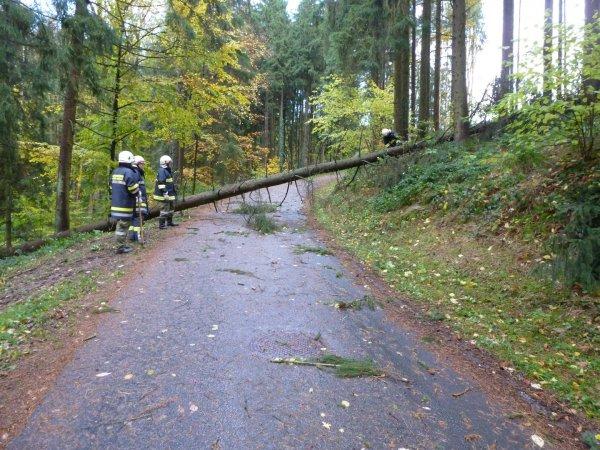 Unwetter vom 29.10.2017  |  (C) FF Winden-Windegg (2017)